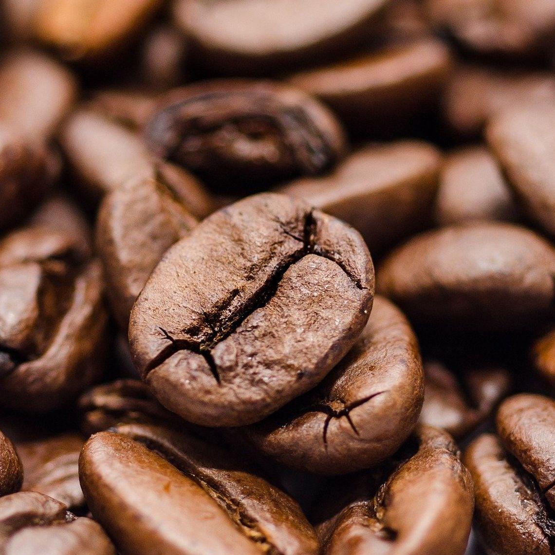 Obrazek - Kawa ziarnista - przepis na dobrą filiżankę kawy