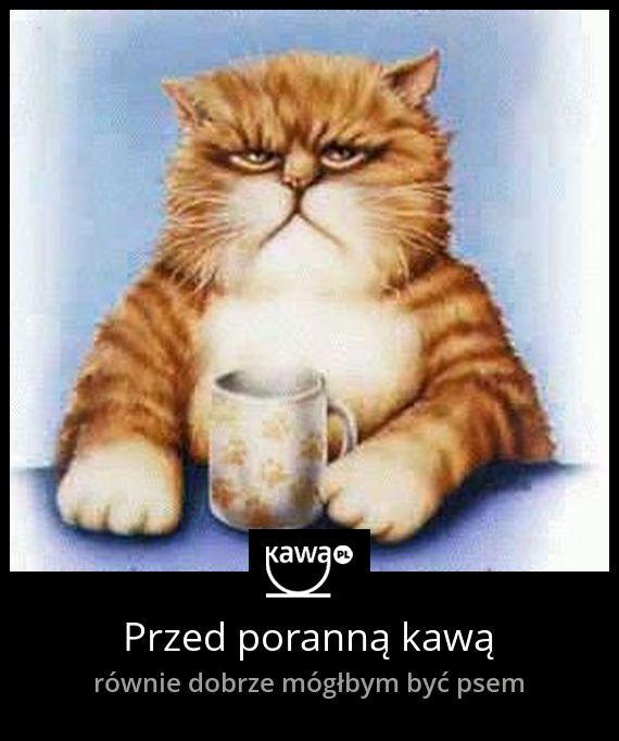 Przed poranną kawą