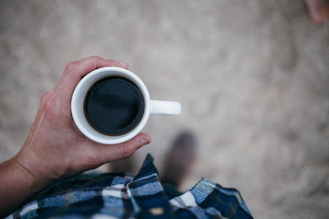 Obrazek - Kopi luwak, czyli najdroższa kawa świata