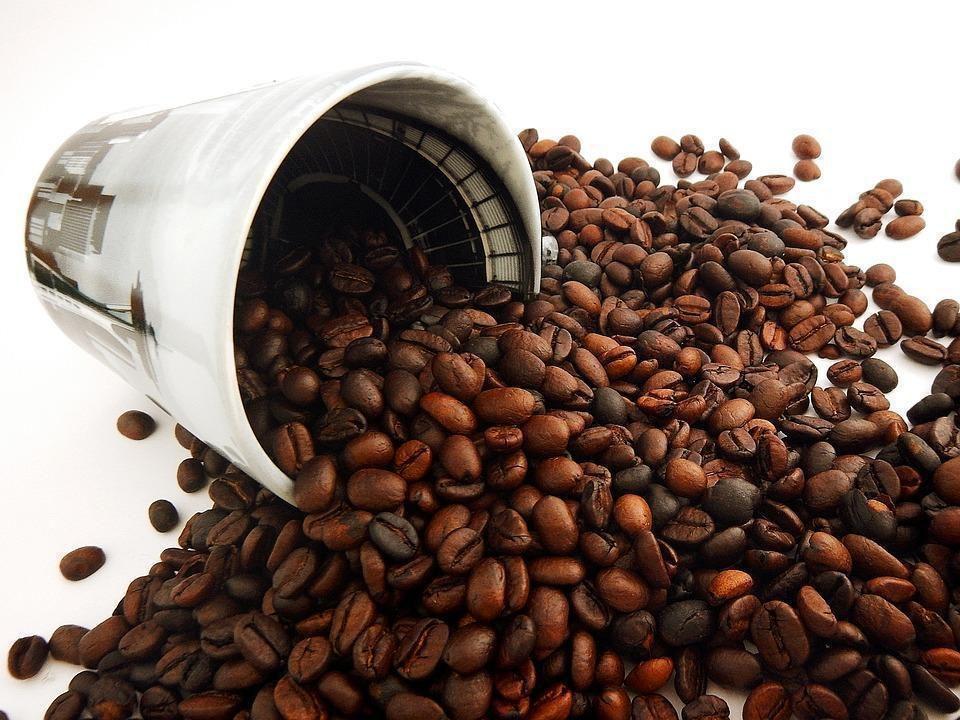 Obrazek - Kawa dla początkujących - jaką wybrać kawę?